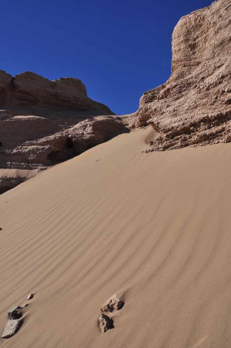 行走在沙漠圖片